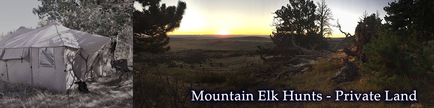 Tyler Sims Outfitting - mountain elk hunts