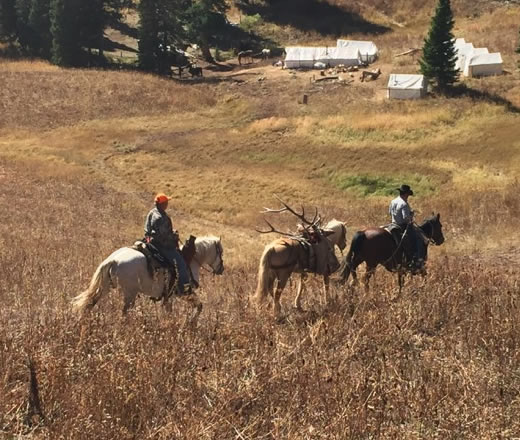 Trophy Mountain Pack in Wilderness Camp Elk Hunt