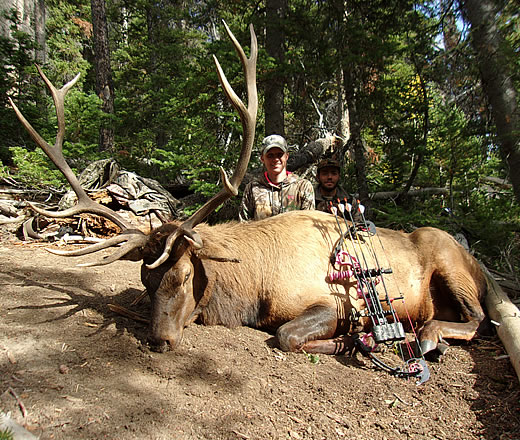 Trophy Mountain Archery Elk Hunts